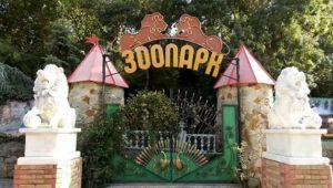 Зоопарк. Для маленьких гостей Ялты