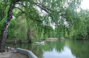 Городской парк Саратова