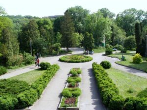 Центральный сибирский ботанический сад