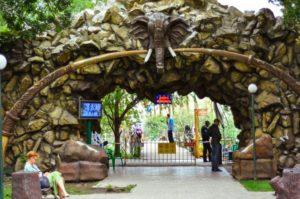 Парк «Солнечный остров» с «Сафари-парком»
