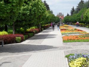 Улица Красная и Александровский бульвар
