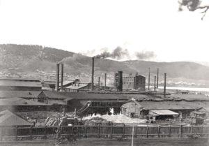 Липецк в конце XIX века