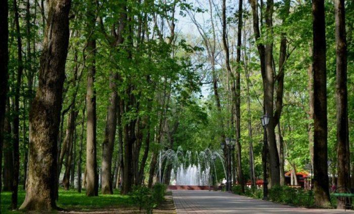 Сад им. М.И. Глинки (Блонье)