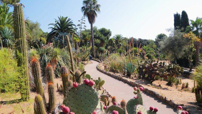 Ботанический сад Пинья Роза