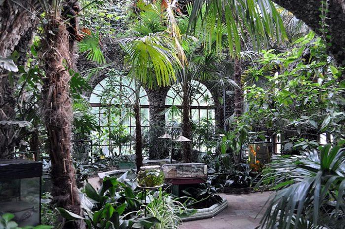 Зимний сад в парке Румянцевых и Паскевичей