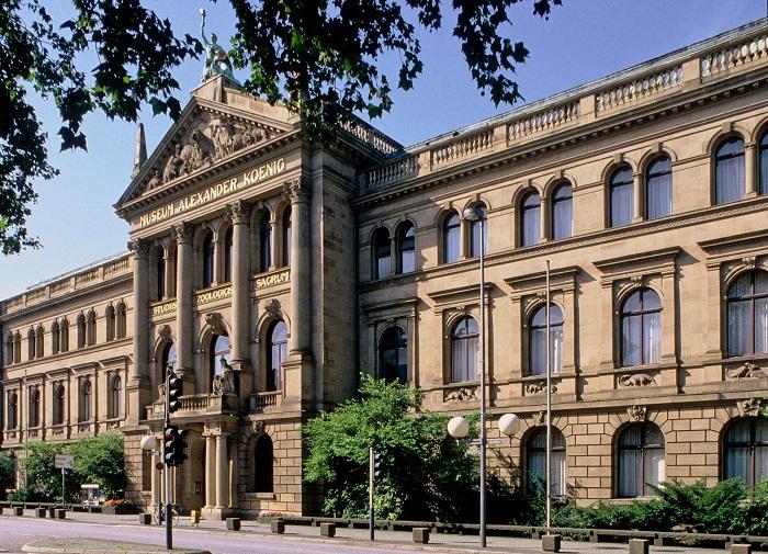 Музей зоологии