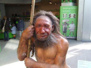 Неандертальский музей