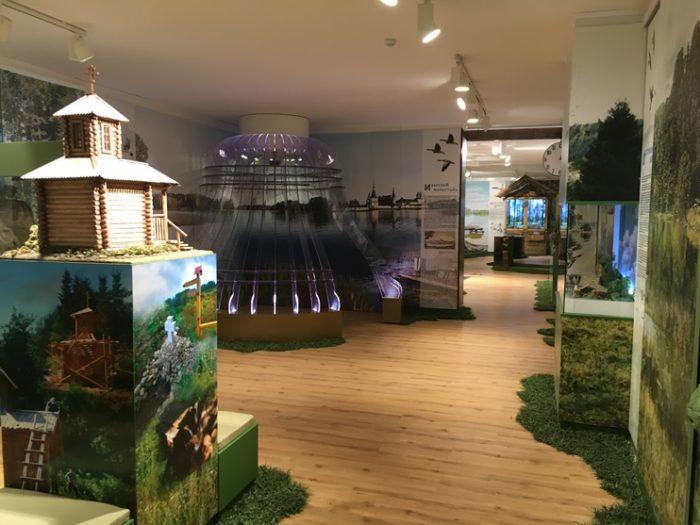 Один из залов музея представляющий флору и фауну Национального парка