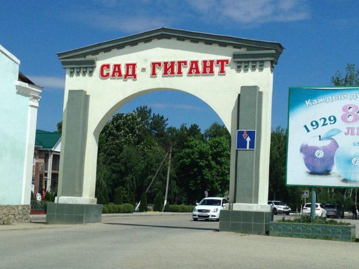Музей истории хозяйства «Сад-гигант»