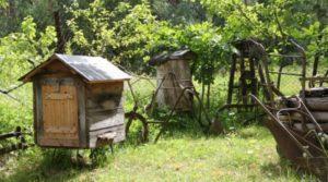 Экспонаты музея «Медовый хуторок»