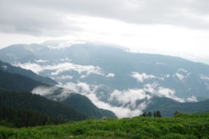 Гора Мамзышха