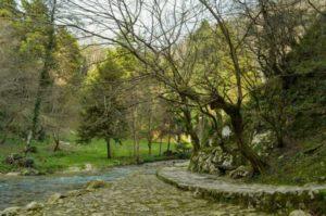 Тропа Сад камней