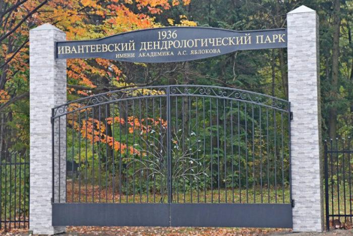 Ивантеевский дендрологический парк им. А.С.Яблокова