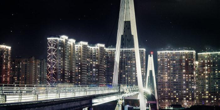 Пешеходный мост «Павшинская пойма»