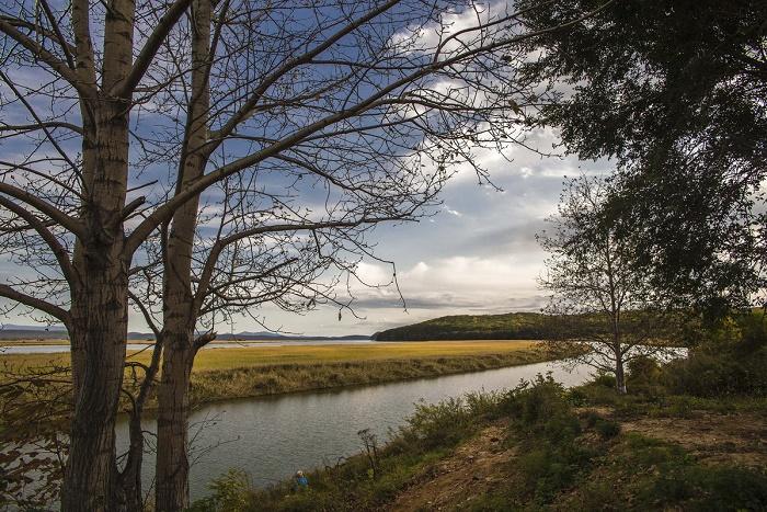 Река Артемовка