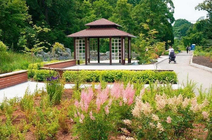 Ботанический сад-институт ДВО РАН