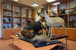 Зоологический образовательный музей