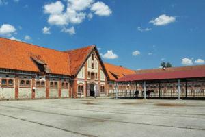 Конный завод Георгенбург